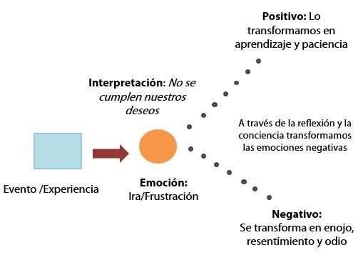 Transformación de la frustración